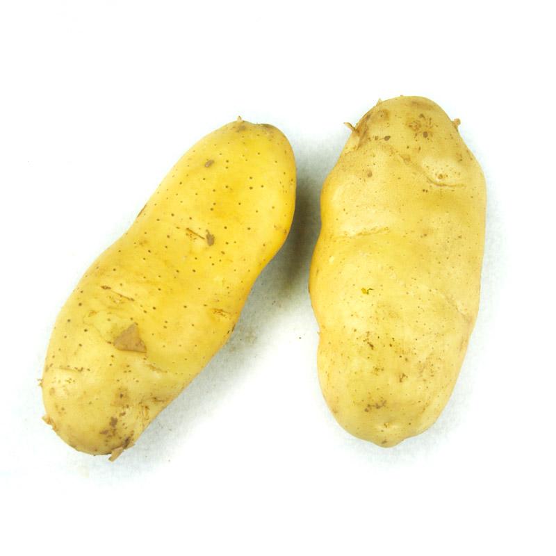 荷兰土豆0.5kg
