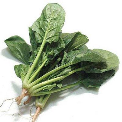 小菠菜0.4kg